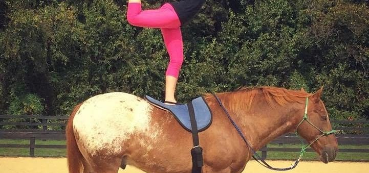10 lucruri pe care să le ai în considerare când vrei să îți cumperi un cal